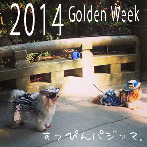 2014goldenweek