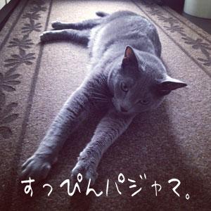 suppin-pajama-5.jpg